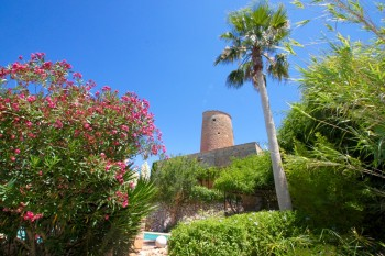 View Full Details for Santa Eugenia Nr Santa Maria, Mallorca, Spain, , International, 1454689