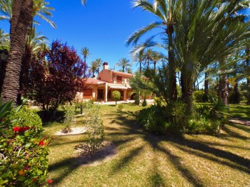 View Full Details for Elche, Costa Blanca, Spain, , International, 1481489